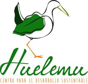 logo-huelemu